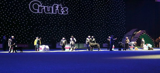 Crufts - Footer 2